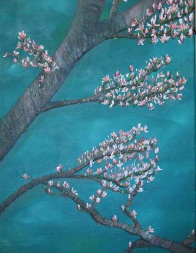 Blossem branches