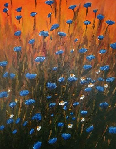 Cornflowers 60 bij 80 (1) (1)